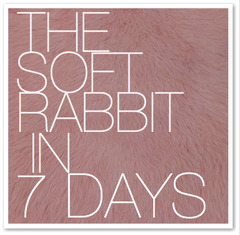 THE SOFT RABBIT IN 7 DAYS