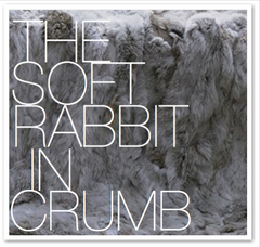 THE SOFT RABBIT IN CRUMB