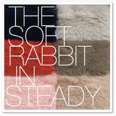 THE SOFT RABBIT IN CURIO STEADY