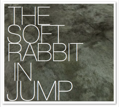 THE SOFT RABBIT IN JUMP