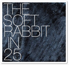 THE SOFT RABBIT IN 25