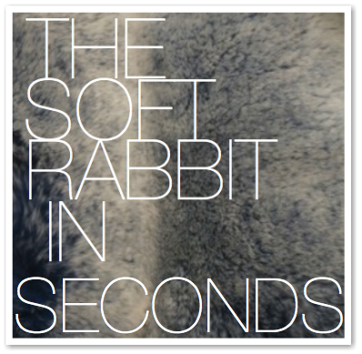 THE SOFT RABBIT IN SECONDS