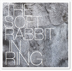 THE SOFT RABBIT IN RING