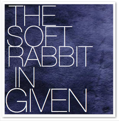 THE SOFT RABBIT IN GIVEN