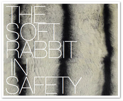 THE SOFT RABBIT IN SAFETY