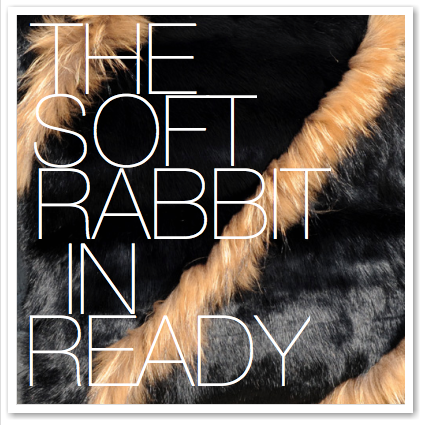 THE SOFT RABBIT IN READY