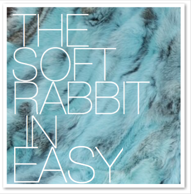 THE SOFT RABBIT IN EASY