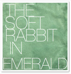 THE SOFT RABBIT IN EMERALD