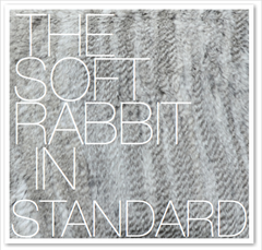THE SOFT RABBIT IN STANDARD