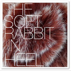 THE SOFT RABBIT IN HEEL