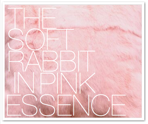 THE SOFT RABBIT IN PINK ESSENCE