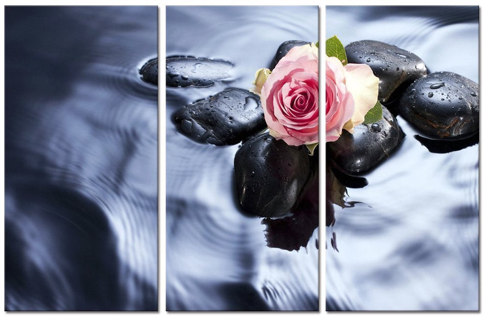 """PINK BUD THROUGH WATER"""