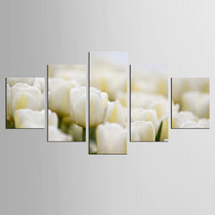 """A MASS OF WHITE TULIPS"""