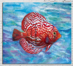 """ANGRY RED FISH"""