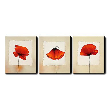"""3 VIEWS OF A SINGLE RED FLOWER"""