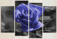"""LAVENDER ROSE, GREY BACKGROUND"""