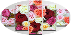 """MIXED COLOR ROSES"""