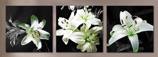 """IT'S BLACK AND WHITE: UNKNOWN FLOWER"""