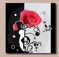 """PINK ROSES ON BLACK & WHITE"""