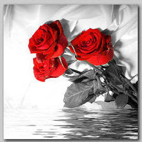 """ROSES OVER RIPPLED WATER"""