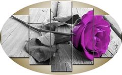 """RESTING PURPLE ROSE"""