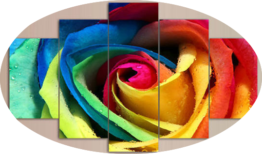 """THE RAINBOW HEART ROSE"""