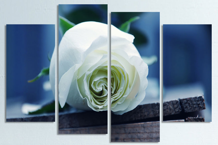 """WHITE ROSE ON A BOX"""