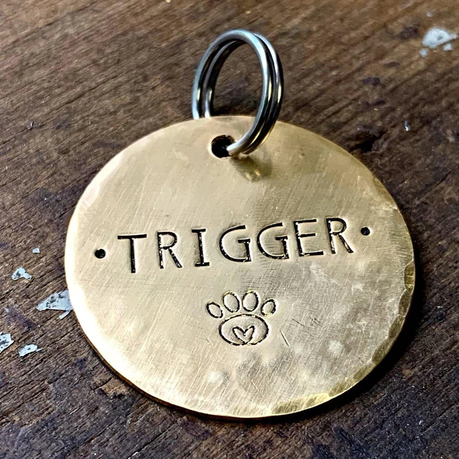 personalized brass pet tag