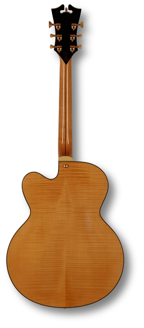 dangelico-archtop-p-90s-natural-tint-daex59nat-us14080351 indonesia