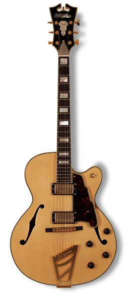 dangelico-archtop-16-dual-hum-natural-clear-daexdhnac-us14100334