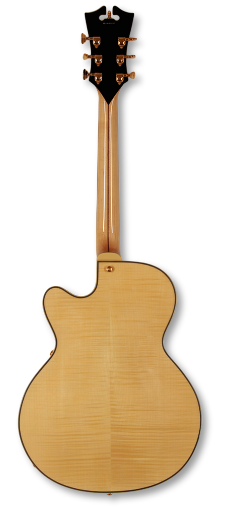 dangelico-archtop-16-dual-hum-natural-clear-daexdhnac-us14100334 indonesia