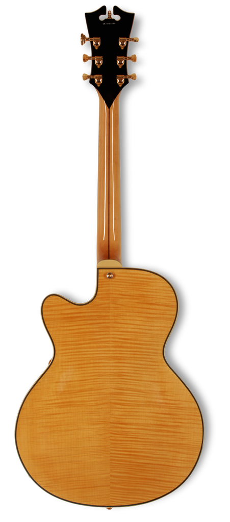 dangelico-archtop-16-dual-hum-natural-tint-daexdhnat-us14100338 indonesia