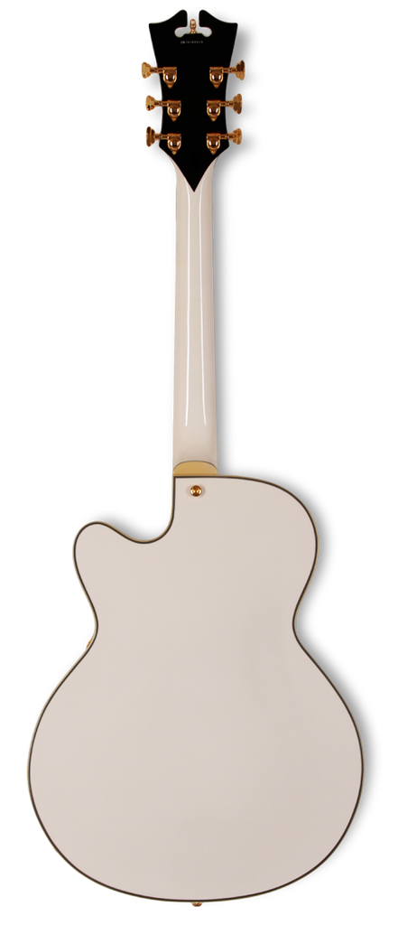 dangelico-archtop-16-dual-hum-white-daexdhwh-us14100518 indonesia