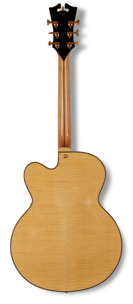 dangelico-archtop-floating-natural-clear-daexl1nac-us14100204 indonesia