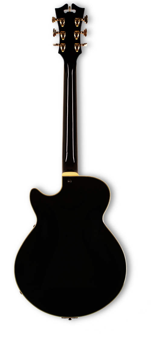 Dangelico SINGLE CUTAWAY BLACK DAEXSSBLK US14100483 dangelico - HIENDGUITAR.COM