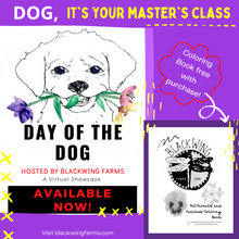Webinar = DAY of the DOG