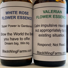 Practitioner's Set of all 6 Individual Flower Essences