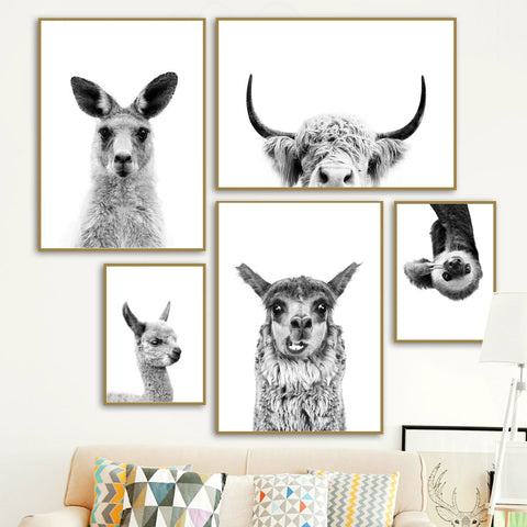 Black & White Alpaca Yak Otter Sloth Animals Wall Art - Mia & Stitch