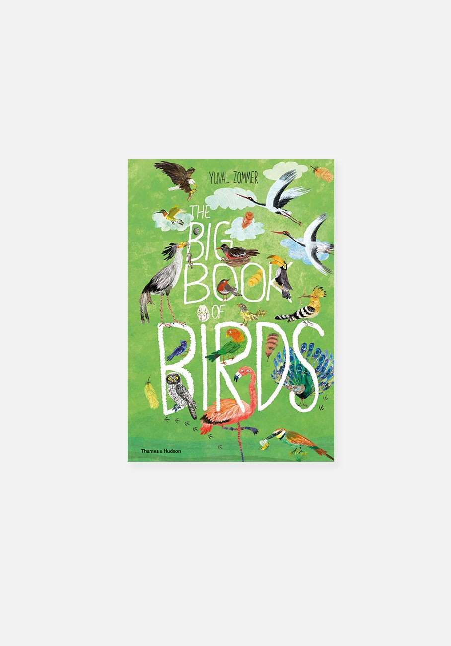 'The Big Book of Birds' By Yuval Zommer