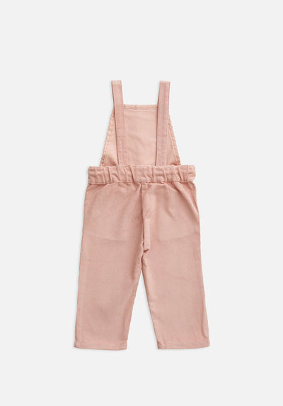 baby mountain rose overall