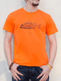 Mens organic cotton ethical t shirt DriftFish Drift Fish surf clothing