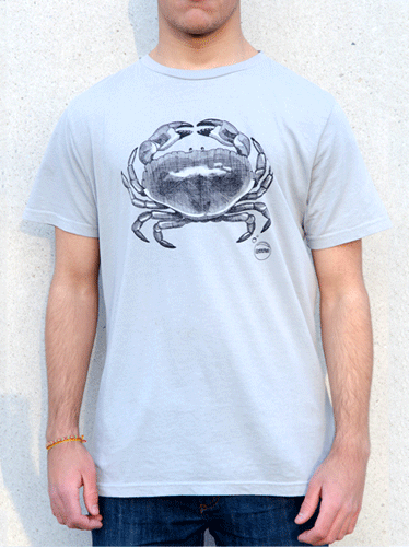 Mens organic cotton ethical t shirt DriftFish surf clothing
