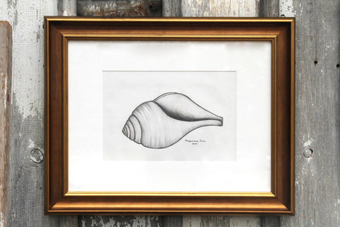 Original Shell Art Large