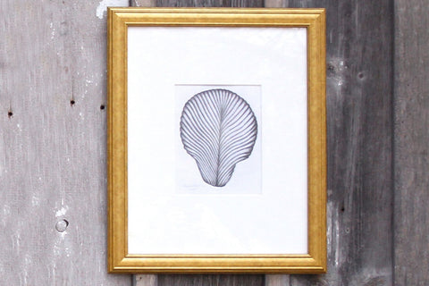 Original Shell Art Medium 2