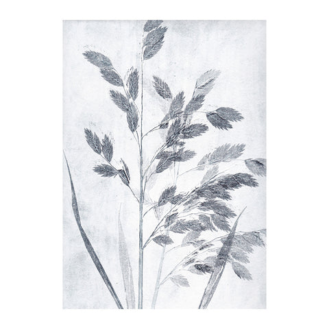 Grass Dusty Blue Limited Edition Print, Pernille Folcarelli