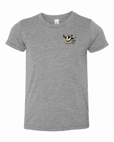 THE PENGUIN PROJECT OF THE SAUK VALLEY t-shirt fundraiser - HEATHER GRAY - YOUTH SIZES