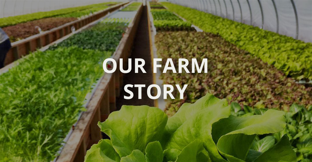 about our farm