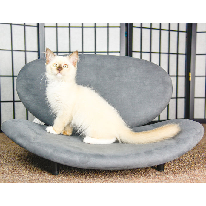 OOAKforHOME Lee Pet Bed - One of a Kind for Home