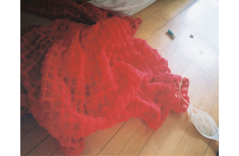 Flung (Red Brushed Wool Check Dress), 2014