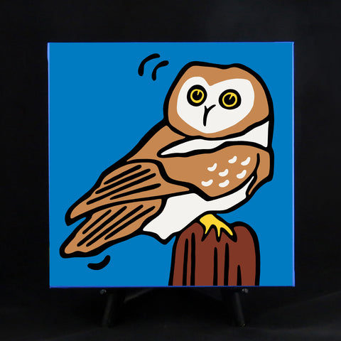 Owl Fine Art Canvas - 2 sizes available
